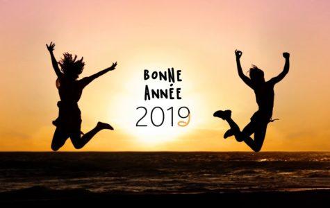 AMMA ASSIS NANTES 2019